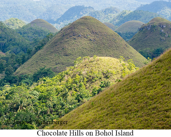 Chocolate Hills - © James F Wittenberger and Exotic Birding Tours