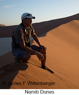 Namib Dunes - © James F Wittenberger and Exotic Birding LLC