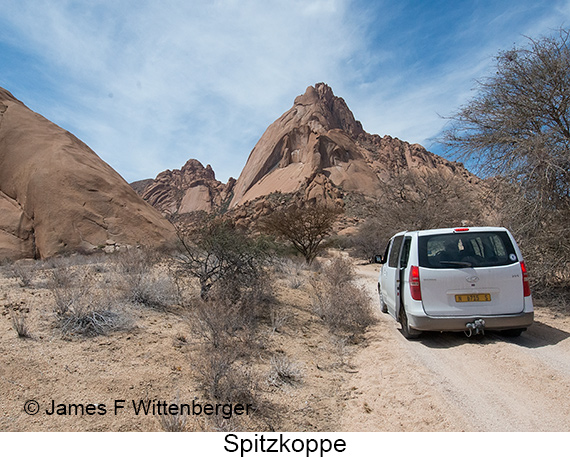 Spitzkoppe - © The Photographer and Exotic Birding LLC
