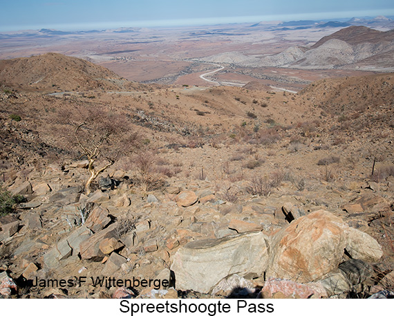 Spreetshoogte Pass - © The Photographer and Exotic Birding LLC