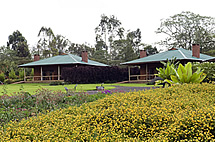 Tloma Lodge in the Ngorongoro Highlands - courtesy Tloma Lodge
